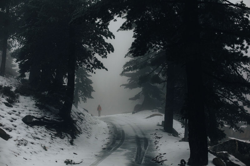 foggy snowy road to keller peak in the san bernardino national forest