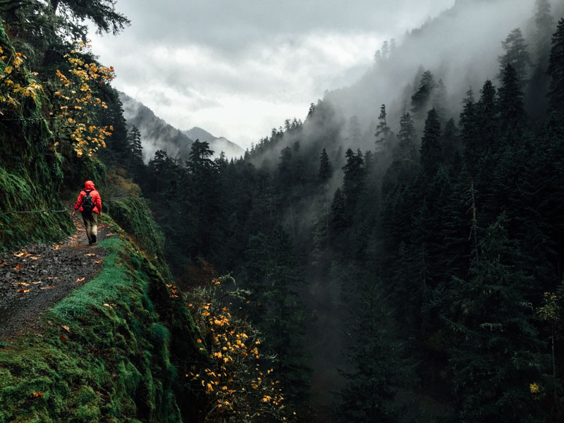 a misty hike on eagle creek trail in the columbia river gorge